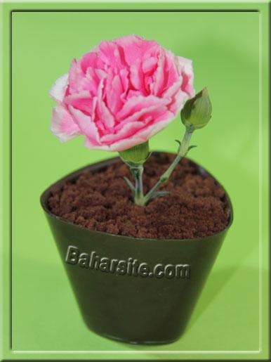 دسر گلدانی